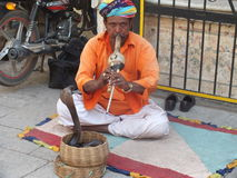 Snake charmer playing musical instrument Royalty Free Stock Photos