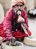 Snake Charmer in Varanasi, Uttar Pradesh, India Royalty Free Stock Images
