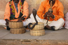 Snake charmers Stock Photography