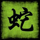 Snake Chinese Zodiac royalty free stock photos