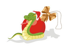 Snake with Christmas ball. Snake in expectation of New Year with Christmas ball Stock Photo