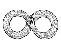Snake curled in infinity ring. Ouroboros devouring stock illustration