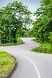 Snake curved road Stock Images