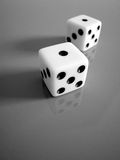 Snake Eyes B&W. Close up of a pair of dice in B&W with shallow DOF royalty free stock photo