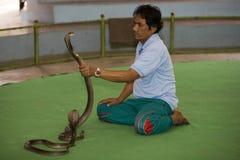 Snake farm in Bangkok Stock Image