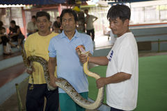 Snake farm in Bangkok Stock Photo