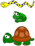 Snake, frog and turtle Stock Photography
