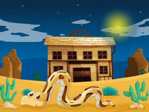 Snake in front of house Royalty Free Stock Photo