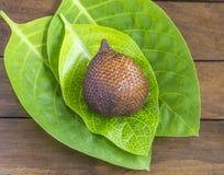 Snake Fruit. Stock Photos