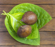 Snake Fruit. Stock Photography