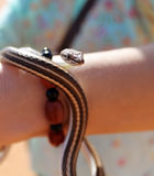 Snake in a girl hand Stock Photos
