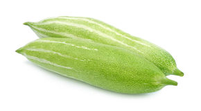 Snake gourd Royalty Free Stock Image