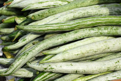 Snake gourd. At the markets Royalty Free Stock Photo