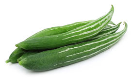 Free Snake Gourd Royalty Free Stock Images - 32673379