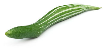 Snake gourd Royalty Free Stock Photo