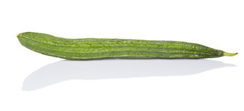 Snake Gourd Vegetable V Stock Photo