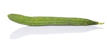 Snake Gourd Vegetable V Stock Photo