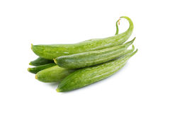Snake gourd on white background Stock Photo