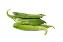Snake gourd on white background Royalty Free Stock Photo