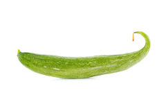 Snake gourd on white background Stock Image
