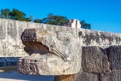 Snake Head in Chichen Itza. Snake head with the ball court in the background in the ancient Mayan ruins of Chichen Itza in Mexico Royalty Free Stock Image
