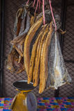 Snake-head dried fish. At the market in Thailand Royalty Free Stock Photo