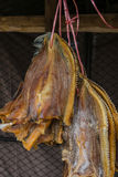 Snake-head fish dried. Snake-head dried fish at the market in Thailand Royalty Free Stock Image