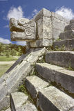 Snake head, Mexico. Snake head on Chichen-Itza temple steps located in Mexico Royalty Free Stock Photography