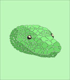 Snake head. Snake mosaic on green background Stock Images