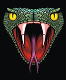 Snake head. Nice snake head on the black background Stock Photo