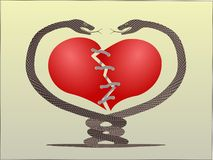Snake heart  string. Snake danger love couple Stock Images