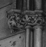 The snake is on the hunt. Shot in black and white, detail on the sculpture on the facade of this historic building representing some characters / animals / Royalty Free Stock Photos