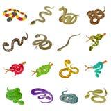 Snake Icons Set, Isometric Style Stock Photo