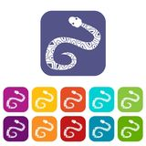 Snake icons set flat. Snake icons set vector illustration in flat style In colors red, blue, green and other Royalty Free Stock Image