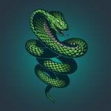 Snake illustration stock illustration