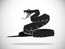 Snake Royalty Free Stock Image