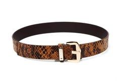 Snake leather belt. Isolated on white background stock photos