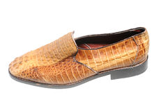 Snake leather shoe Stock Photos