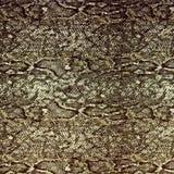 Snake leather skin background Stock Photos