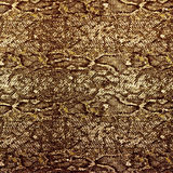 Snake leather skin background Royalty Free Stock Images