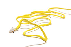 Snake Like Yellow Computer Network Cable royalty free stock image