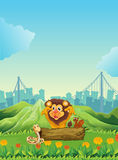 A snake, a lion and a beaver. Illustration of a snake, a lion and a beaver Royalty Free Stock Photos