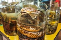Snake liquor Stock Photos
