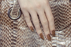 Snake manicure Royalty Free Stock Photography
