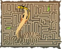 Snake in the maze Stock Images