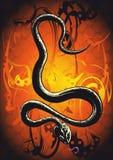 Snake orange. Black snake in front of orange background royalty free illustration