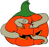 Snake in a pumpkin Stock Photography