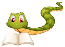 A snake reading. Illustration of a snake reading on a white background Stock Image