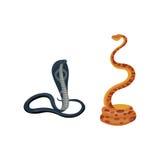 Snake reptile cartoon vector set. Royalty Free Stock Image