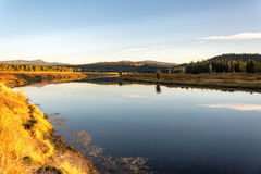 Snake River goldene Stunde Stockbilder